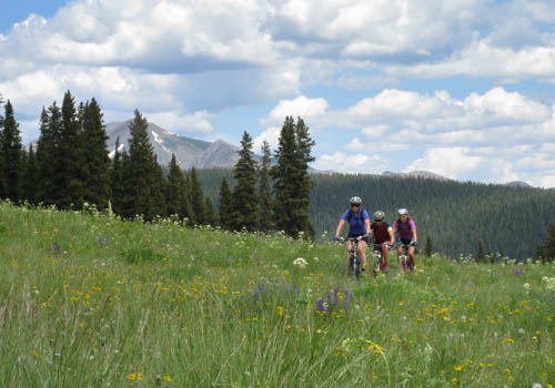 Crested Butte - where the rubber meets the wildflower.