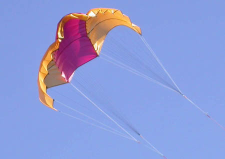 NASA wing kites - small enough to fit in your pocket, yet strong enough to rip your arms off.